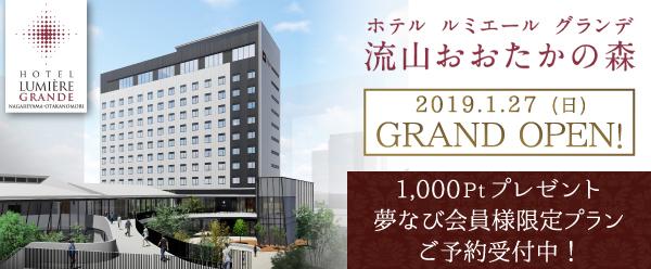 20181105_lumigra_nagareyama.jpg