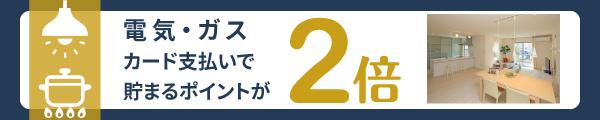 denkigus2_banner.jpg