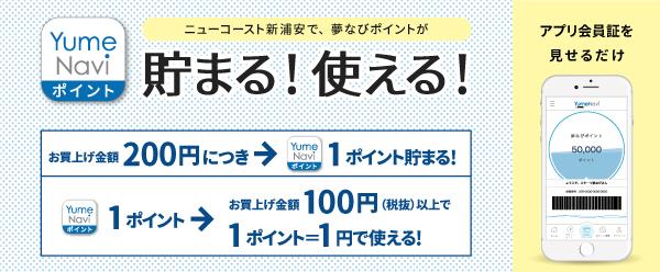 yumenavipoint__.jpg